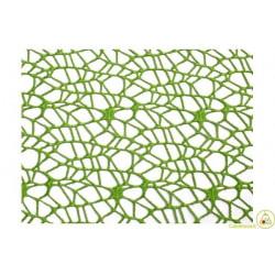 Veli in Polycotton Verde Mela Quadrati cm 24 pz 20