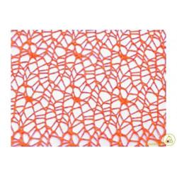 Veli Polycotton Arancione Quadrati cm 24 pz 20