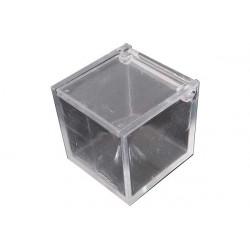 Scatola Cubo portaconfetti Opaco Grezzo in plexiglas 5x5x5cm