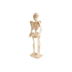Puzzle 3D in legno tema Scheletro Umano