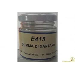 40 gr Gomma di Xantano