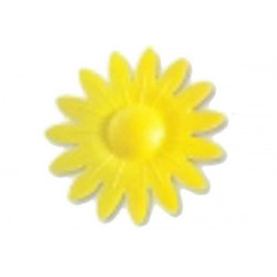 Margherita in cialda pz 4 colore giallo