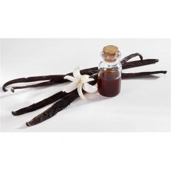 Estratto di vaniglia Bourbon gr 250