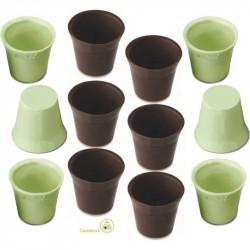 12 Cialde Bicchierini Cioccolato Verdi gusto Limone e Cioccolato extra fondente