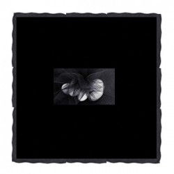 Velo Tulle Orlato Quadrato Nero 24 cm