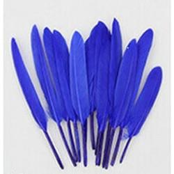 Confezione di 20 Piume d'oca Blu alte da 8 fino a 15 cm