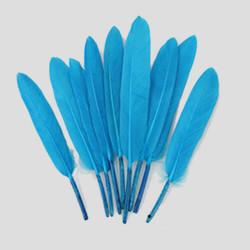 Confezione di 20 Piume d'oca Turchese alte da 8 fino a 15 cm