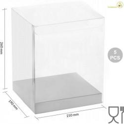 5 Scatole Pet trasparenti con basi in cartoncino bianco 21 cm x 19 cm x 26 cm