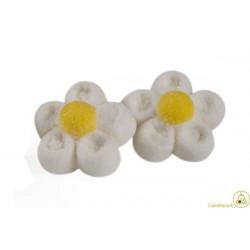 Marshmallow Margherite Bianche Bulgari g 900