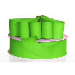Nastro Grosgrain Verde Mela 10mmx20mt