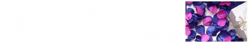 Vendita Piume, Petali e Cuori per Addobbi |CakeItalia Addobbi Party